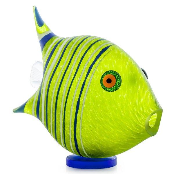 sl_angelfish_object_lime-green_GM-1583-1