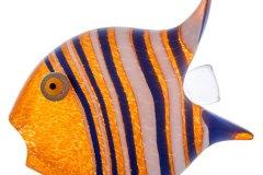 sl_angelfish_object_orange_GM-1587-1