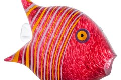sl_angelfish_object_red_GM-1578-1